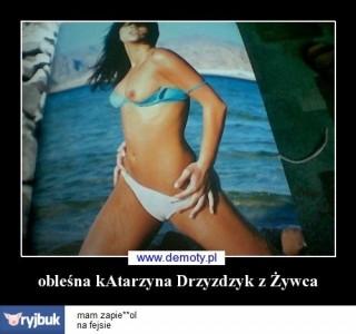 imagehost11