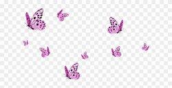 82-827004_transparent-butterflies-png-image-seventeen-vernon-edit-gifs