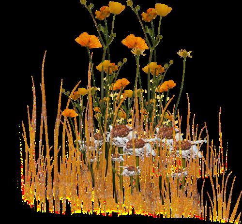 2019 çiçekkli-2