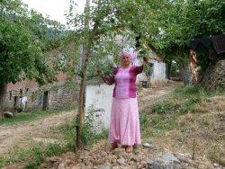 araköy köyü kürtün gümüşhane araköy